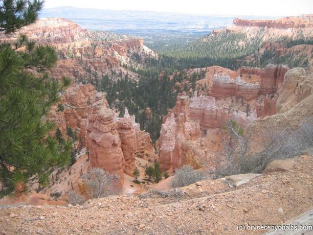 Looking down into Bryce Canyon.jpg