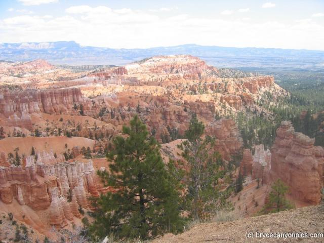 Nice view of the Bryce Canyon.jpg